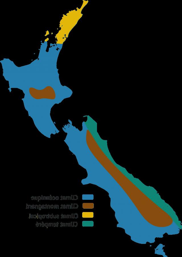 Comment survivre en Nouvelle-Zélande?