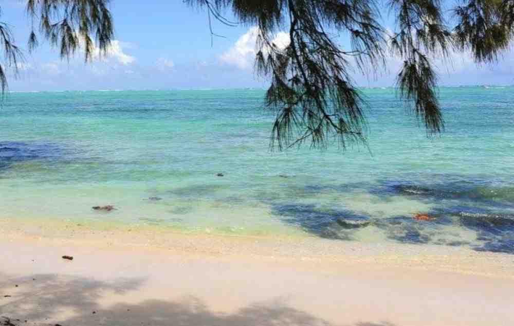 Où loger à Basse-terre Guadeloupe ?