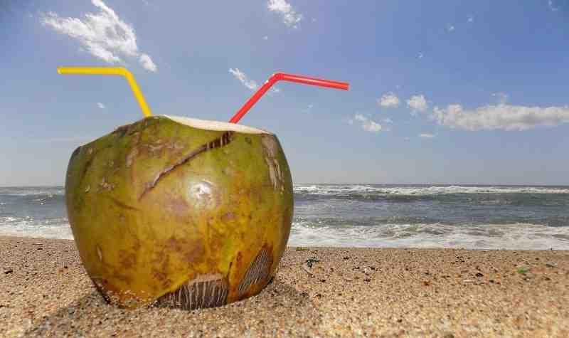 Où mange-t-on un bon Bokit en Guadeloupe?