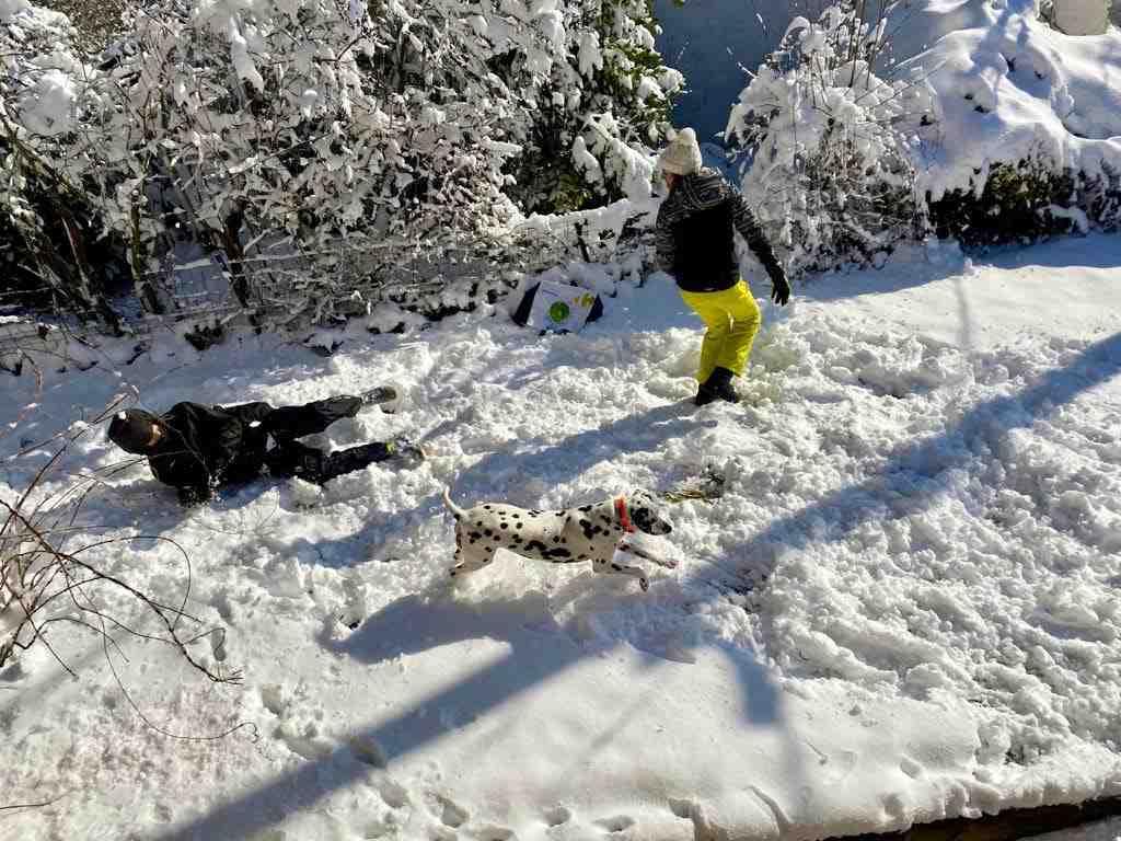 Où trouver de la neige en janvier?