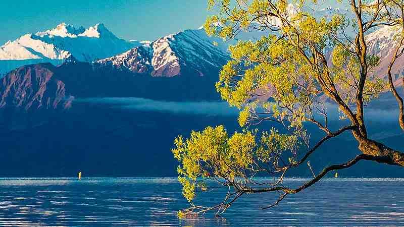 Quand allez-vous en Nouvelle-Zélande WHV?