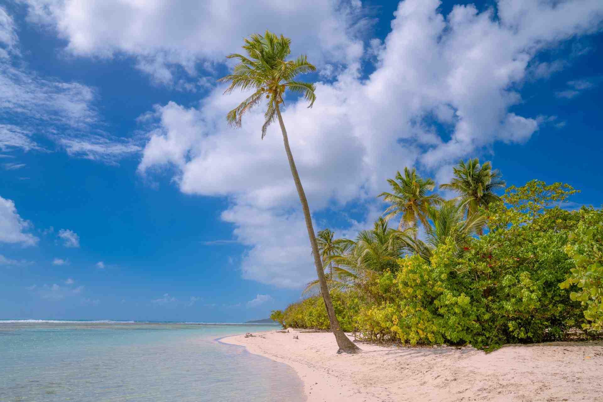 Quel salaire pour bien vivre en Guadeloupe?