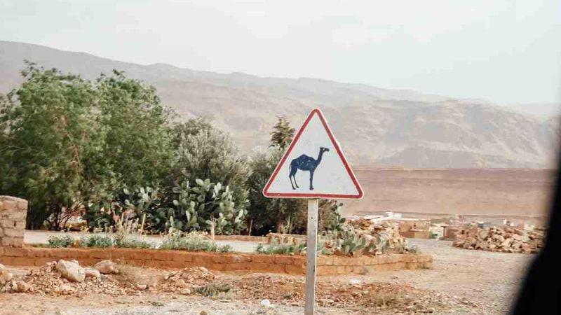 Quelle période pour aller au Maroc ?